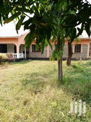 Mamboleo 4 Brs 1acr Home   Houses & Apartments For Rent for sale in Kisumu, Central Kisumu