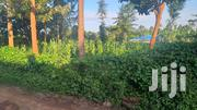 1/4 Acre(100x100) For Sale In Wangige | Land & Plots For Sale for sale in Kiambu, Kabete