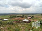 Prime Plot 50 by 100,On Sale at Kibiko Ngong.   Land & Plots For Sale for sale in Kajiado, Ngong