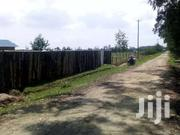 1/2 An Acre With A House On Sale At Kwaharaka Kinangop | Land & Plots For Sale for sale in Nyandarua, Magumu
