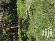 1/8 Acre for Sale in Kenya | Land & Plots For Sale for sale in Kiambu, Ndeiya