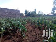 1/4 Acre Vacant Plot for Sale in Teachers' Estate KITI | Land & Plots For Sale for sale in Nakuru, Nakuru East