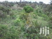 50 Acres Of Land Mwereni Area Shimba Hills Kwale County | Land & Plots For Sale for sale in Kwale, Mwereni