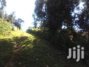 Kinoo 1/8 Acre Plot for Sale | Land & Plots For Sale for sale in Kiambu, Kikuyu