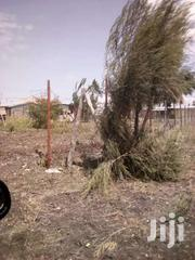 53*81 Land | Land & Plots For Sale for sale in Nairobi, Airbase