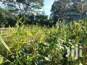 Prime 1⁄8 On Sale In Ngong | Land & Plots For Sale for sale in Kajiado, Ngong