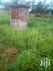 Chia Seeds For Sale | Feeds, Supplements & Seeds for sale in Meru, Timau