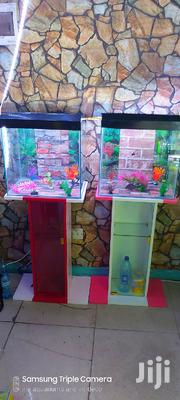 Mini Rack Aquariums | Fish for sale in Nairobi, Ngara