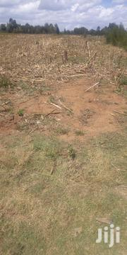 Plot In Ilula 1/4 With Title Deed   Land & Plots For Sale for sale in Uasin Gishu, Tembelio