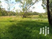 1/4 Acre For Rent | Land & Plots for Rent for sale in Kajiado, Ongata Rongai