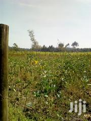 4 Acres Nyamathi, Naivasha | Land & Plots For Sale for sale in Nakuru, Naivasha East