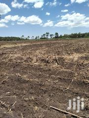 Land 10 Acres Maridadi Trans-Nzoia County   Land & Plots For Sale for sale in Trans-Nzoia, Kwanza