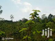 6acres Sagana | Land & Plots For Sale for sale in Kirinyaga, Kariti