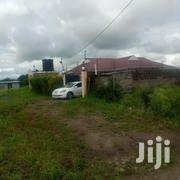 Three Bedroom House in Joska Town | Houses & Apartments For Sale for sale in Kiambu, Ruiru