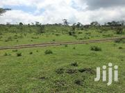 Kiserian Land On Sale | Land & Plots For Sale for sale in Kajiado, Ongata Rongai