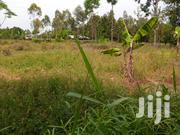 Land For Sale | Land & Plots For Sale for sale in Busia, Bukhayo West