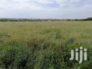 Shamba For Rent At Malaa | Land & Plots for Rent for sale in Machakos, Kangundo West
