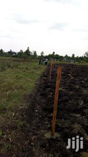 1 Acre of Land in Rodi 750k Negotiable. 800m From the Road | Land & Plots For Sale for sale in Homa Bay, East Gem (Rangwe)