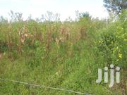 1/4 And 1/2 Acre Commercial Plots At West Gate Kabarak | Land & Plots For Sale for sale in Nakuru, Menengai West