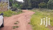 100x100 Plot on Sale at Winyo-Rongo.800k | Land & Plots For Sale for sale in Migori, East Kanyamkago