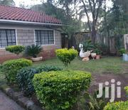 KAREN Bungalow For Rent /Parking And Garden 2 Bedroom House Suecure | Houses & Apartments For Rent for sale in Nairobi, Nairobi Central