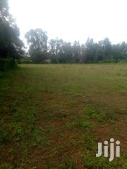 The Land Is Ideal For Farming , School Or Any Other Activities | Land & Plots for Rent for sale in Kisumu, West Kisumu