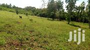 Kikambala A Prime Plot For Sale In Second Raw To The Beach . | Land & Plots For Sale for sale in Mombasa, Mkomani