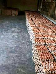 Selling Eggs | Livestock & Poultry for sale in Nairobi, Ruai