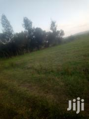 3.5 Acres At 3.15m Mweiga, Mahiga | Land & Plots For Sale for sale in Nyeri, Mweiga