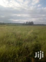 2 Acres Essaco Mweiga Nyeri | Land & Plots For Sale for sale in Nyeri, Mweiga