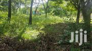 1 Acre Land for Sale in Diani Fronting Second Row Road   Land & Plots For Sale for sale in Nairobi, Kahawa West
