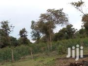 Farm Land In Bondo For Sale | Land & Plots For Sale for sale in Siaya, North Sakwa (Bondo)