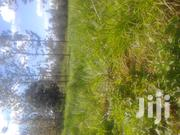 Prime 20 Acres of Agricultural Land in Gathaiti Makuyu | Land & Plots For Sale for sale in Murang'a, Makuyu