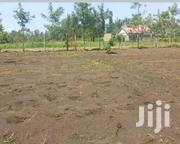 Plot on Sale in Kabati | Land & Plots For Sale for sale in Murang'a, Makuyu