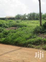 A Very Prime 1/4 Acre(100x100) In Kingeero | Land & Plots For Sale for sale in Kiambu, Kabete