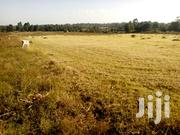 This Two Acres Land Is Located At Makutano,Jikaze,& Selling @500k Acre | Land & Plots For Sale for sale in Nyeri, Mweiga