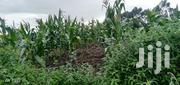2 Acres Land for Sale at Munyu, Naromoru | Land & Plots For Sale for sale in Nyeri, Naromoru Kiamathaga