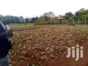 FOR SALE.1/2 Acre For Sale In KITSULU Nairobi | Land & Plots For Sale for sale in Nairobi, Kasarani