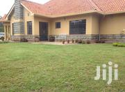 Exquisite 3 Bedroom Bungalow With A Guest Wing In Karen For Rent. | Houses & Apartments For Rent for sale in Nairobi, Karen
