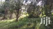4 1/2 Acres With A 6 Bedroom House | Land & Plots For Sale for sale in Nyeri, Karatina Town