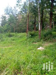 Old Muthaiga 1 Acre Land With a 5 Bedrooms House for Sale | Land & Plots For Sale for sale in Nairobi, Karura
