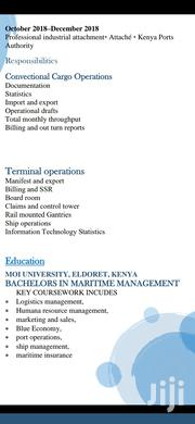 Advertising & Marketing CV | Advertising & Marketing CVs for sale in Uasin Gishu, Kapsoya