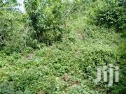 Classic 1/2 Acre 2nd Row Beach | Land & Plots For Sale for sale in Kwale, Ukunda