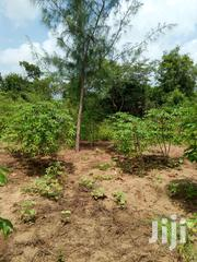 Prime Land on Sale | Land & Plots For Sale for sale in Kilifi, Gongoni