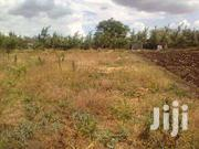 3 PLOTS 50x100 1,200,000 | Land & Plots For Sale for sale in Busia, Nangina