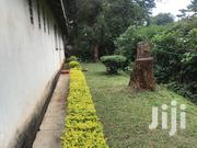 House For Rent In Lower Kabete | Houses & Apartments For Rent for sale in Nairobi, Westlands