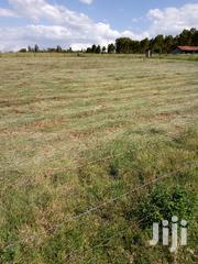 1 Acre Mweiga | Land & Plots For Sale for sale in Nyeri, Mweiga