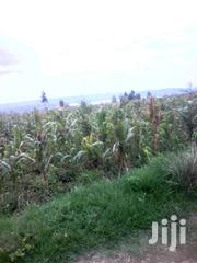 1 Acre Kinungi, Naivasha | Land & Plots For Sale for sale in Nakuru, Naivasha East