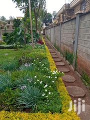 Crystal Gardening And Landscapers | Landscaping & Gardening Services for sale in Nairobi, Karen
