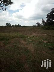 1 Acre In Kamburaini, Naromoru | Land & Plots For Sale for sale in Nyeri, Naromoru Kiamathaga